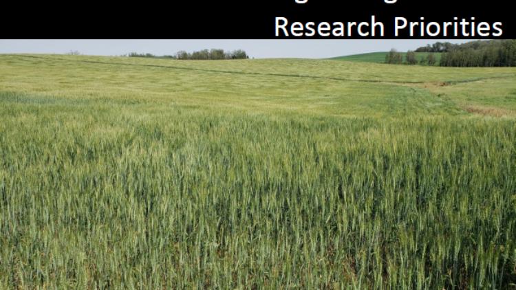 SaskOrganics ReleasesOrganic Research Priorities Report